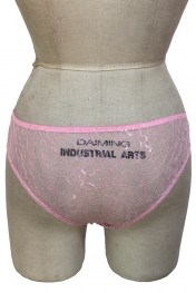 Intimate Lace Back Panty Pink