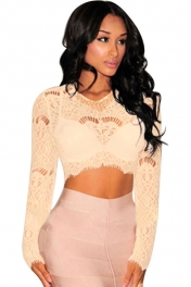 Apricot Sheer Lace Long Sleeves Crop Top