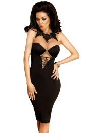 Black Premium Embellished Lace Mesh Bodycon Dress